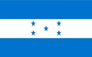 Honduras WK 2010 Zuid-Afrika Vlag