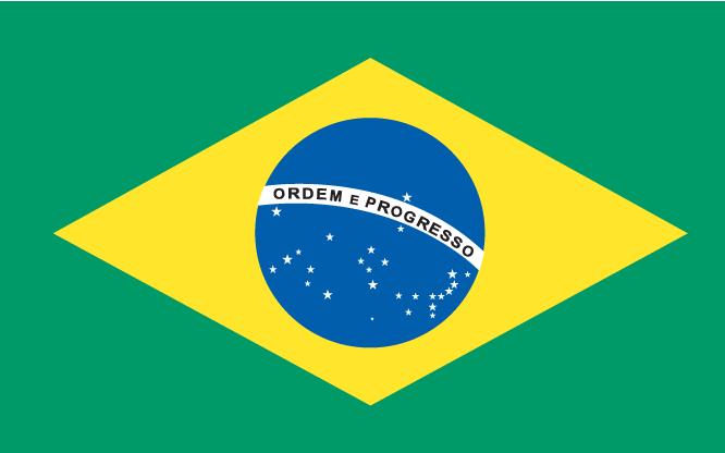 Brazilië vlag 2010 wk Zuid-Afrika
