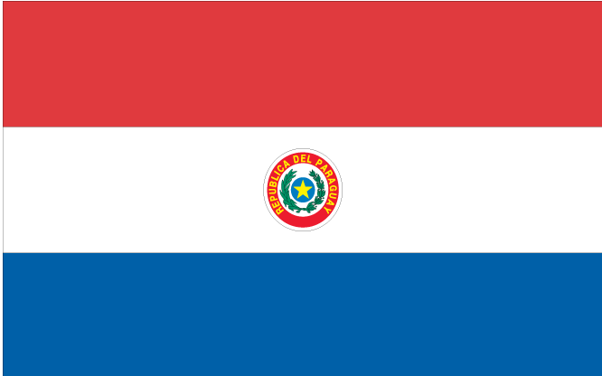 Paraguay Vlag WK 2010