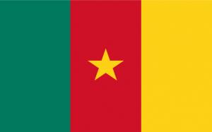 Kameroen Vlag WK 2010 Zuid-Afrika